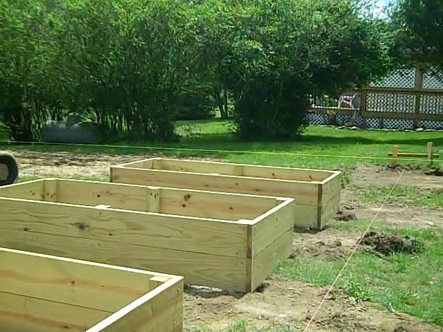 Garden construction jimdavenport - Pressure treated wood for garden beds ...