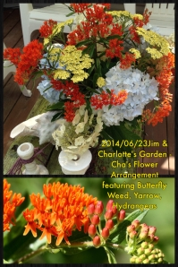 2014-06-23 Jim & Charlotte's Garden - Cha's Flower Arrangement featuring Butterfly Weed, Yarrow, Hydrangeas