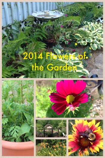 2014 Flowers of the Garden