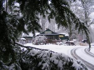 WildFlower Cafe in Winter