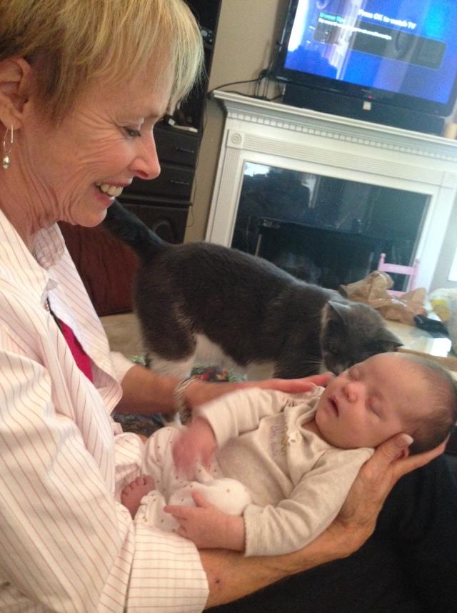 Charlotte, Rhory and Kitty