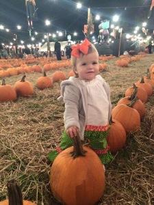 Rhory Selecting Her Pumpkin