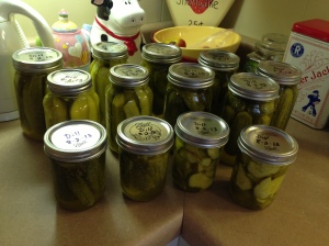 2013-08-02 Dill Pickles