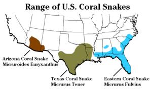 300px-USA_Coral_Snake_Range