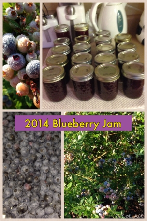 2014 Blueberry Jam Collage