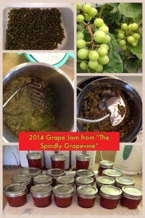 2014 Grape