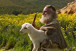 Shepherd&Lamb