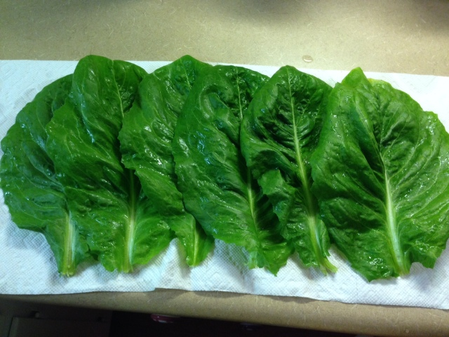 2015 Corcarde Lettuce Leaves -a  perennial - IMG_6219